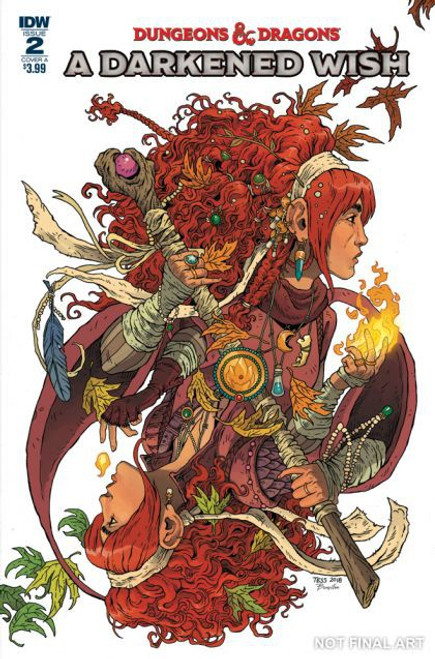 IDW Publishing Dungeons & Dragons: A Darkened Wish #2A Comic Book