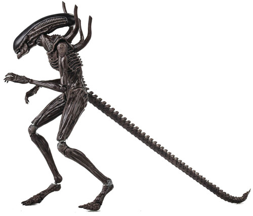 Alien Covenant Xenomorph Alien Action Figure (Pre-Order ships May)