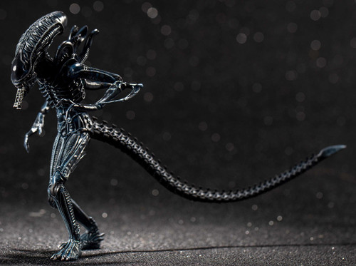Aliens Xenomorph Alien Warrior Action Figure [Blue] (Pre-Order ships February)