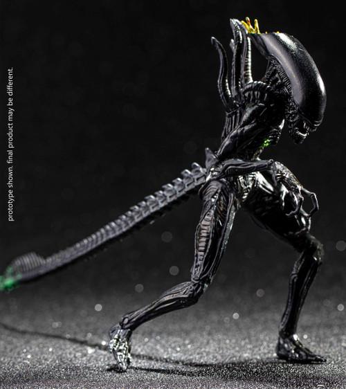 AVP Alien vs. Predator Xenomorph Alien Warrior Action Figure [Blownout] (Pre-Order ships October)
