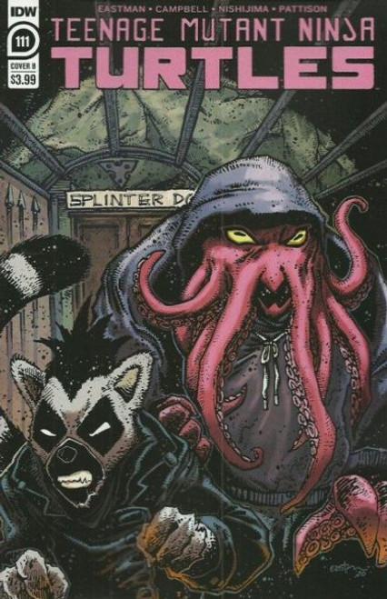 IDW Publishing Teenage Mutant Ninja Turtles, Vol. 5 #111B Comic Book