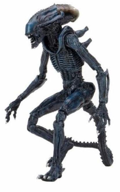NECA Alien vs Predator Video Game Arachnid Alien Action Figure [Movie Treatment] (Pre-Order ships November)