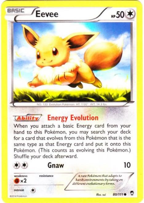 Pokemon X & Y Furious Fists Common Eevee #80