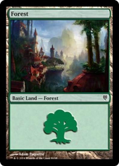 MtG Duel Decks: Jace vs. Vraska Land Forest [RANDOM Artwork]