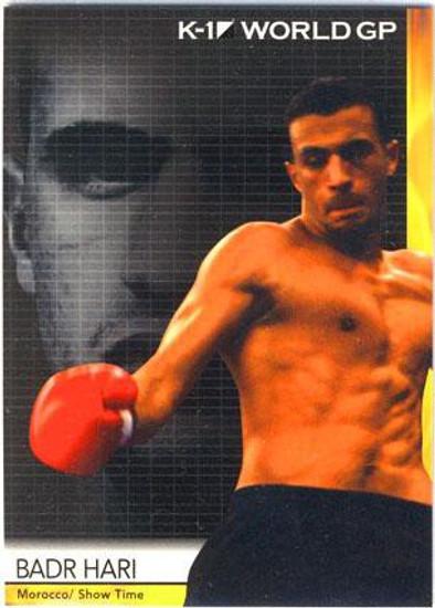 MMA K-1 World GP Badar Hari #08