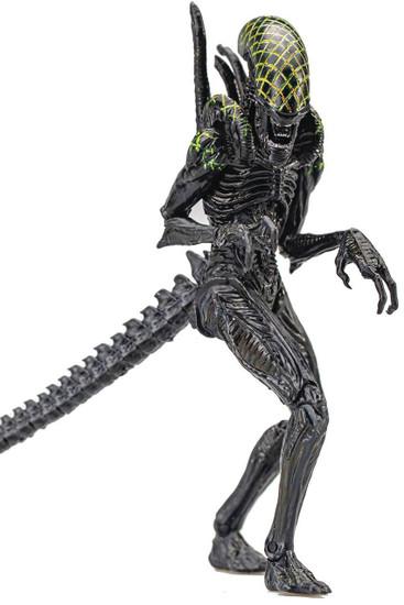 AVP Alien vs. Predator Grid Xenomorph Alien Exclusive Action Figure (Pre-Order ships October)