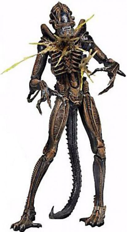 NECA Aliens Series 12 Battle-Damaged Alien Xenomorph 9 ...