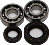 ALL BALLS CRANKSHAFT BEARING/SEAL KIT (24-1067)