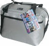 """AO COOLERS 12 PACK CARBON COOLER SILVER 14""""X7""""X12"""" (AOCR12SL)"""