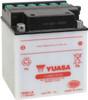 Yuasa YB30CL-B Battery