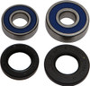 ALL BALLS REAR WHEEL BEARING/SEAL KIT (25-1206)