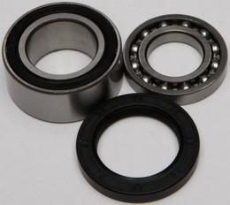 All Balls Chain Case Bearing & Seal Kit - 14-1011