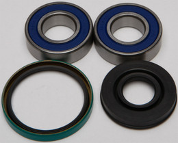 All Balls Chain Case Bearing & Seal Kit - 14-1023