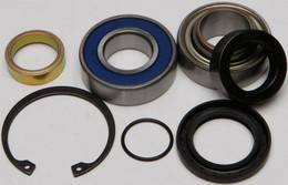 All Balls Chain Case Bearing & Seal Kit - 14-1039