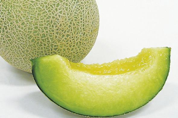 Japanese Melon Fragrance