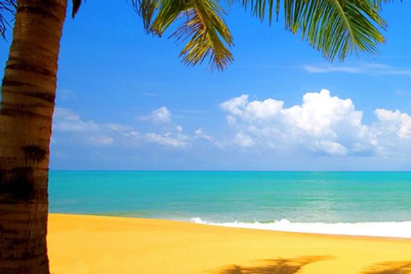 Sunny Beaches Fragrance