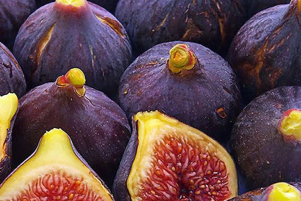 Fig Fragrance