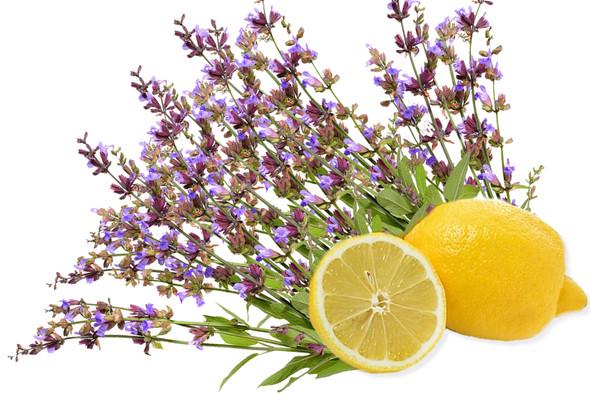 Citrus and Sage Fragrance