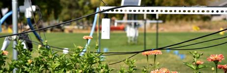 Irrigation Study