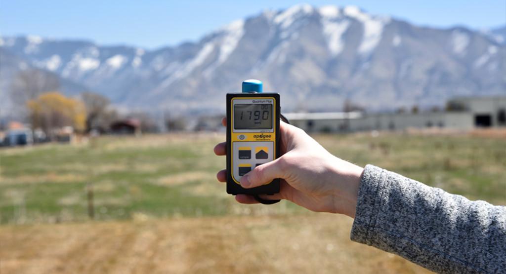 MQ-501: Handheld Full-spectrum Quantum Meter