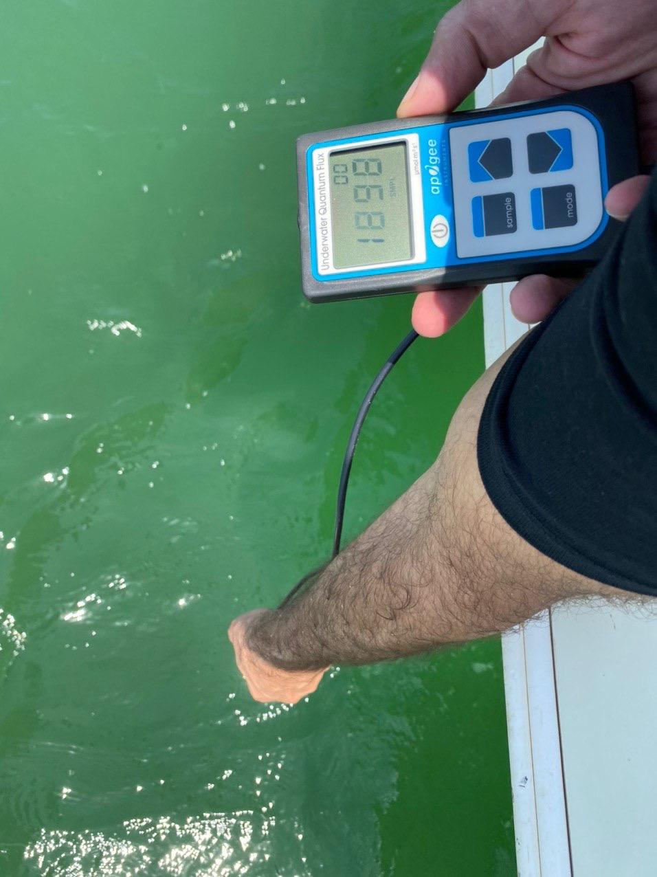 PAR measurements with MQ-510 underwater quantum meter