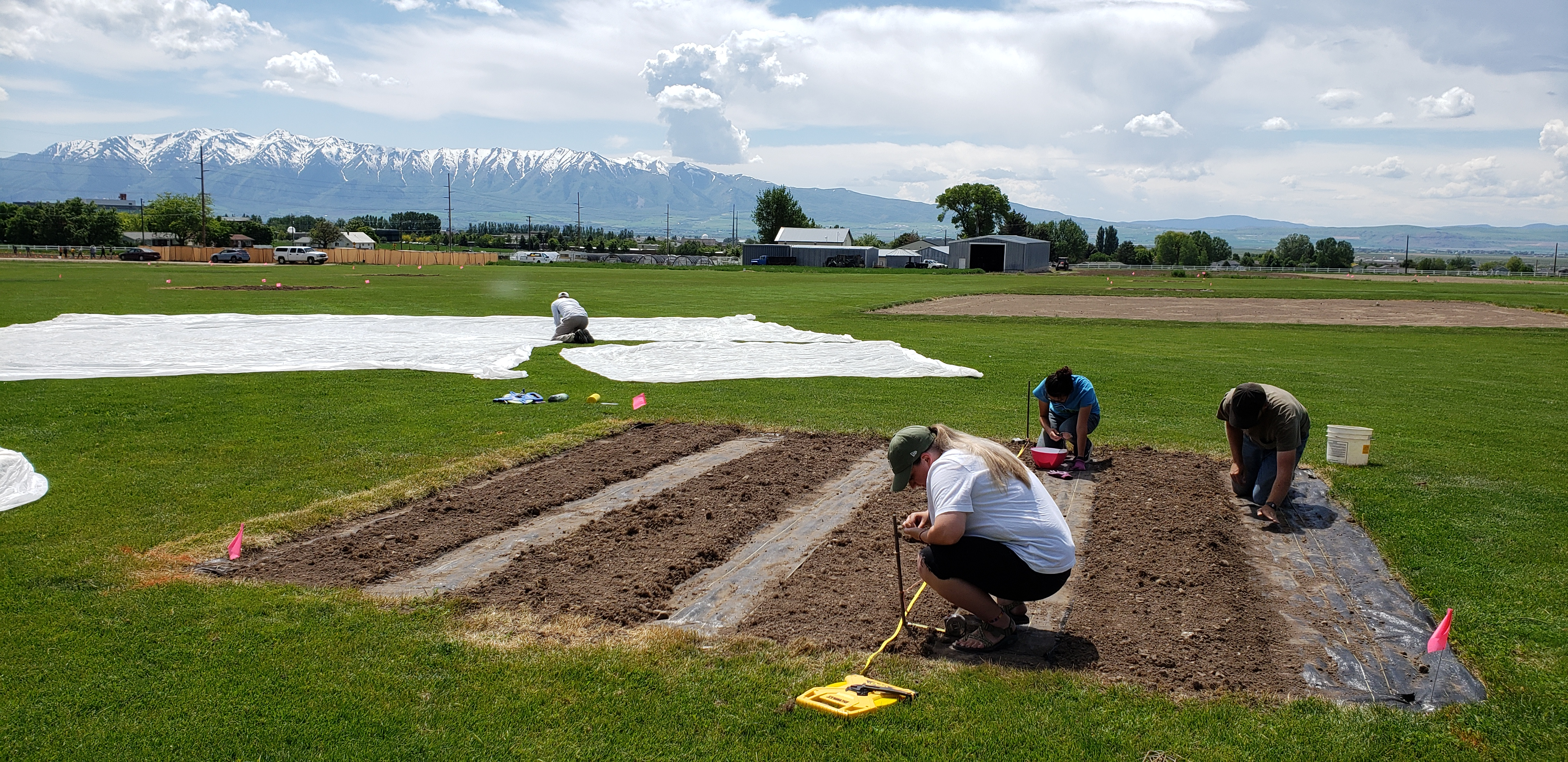 Setting up the plots