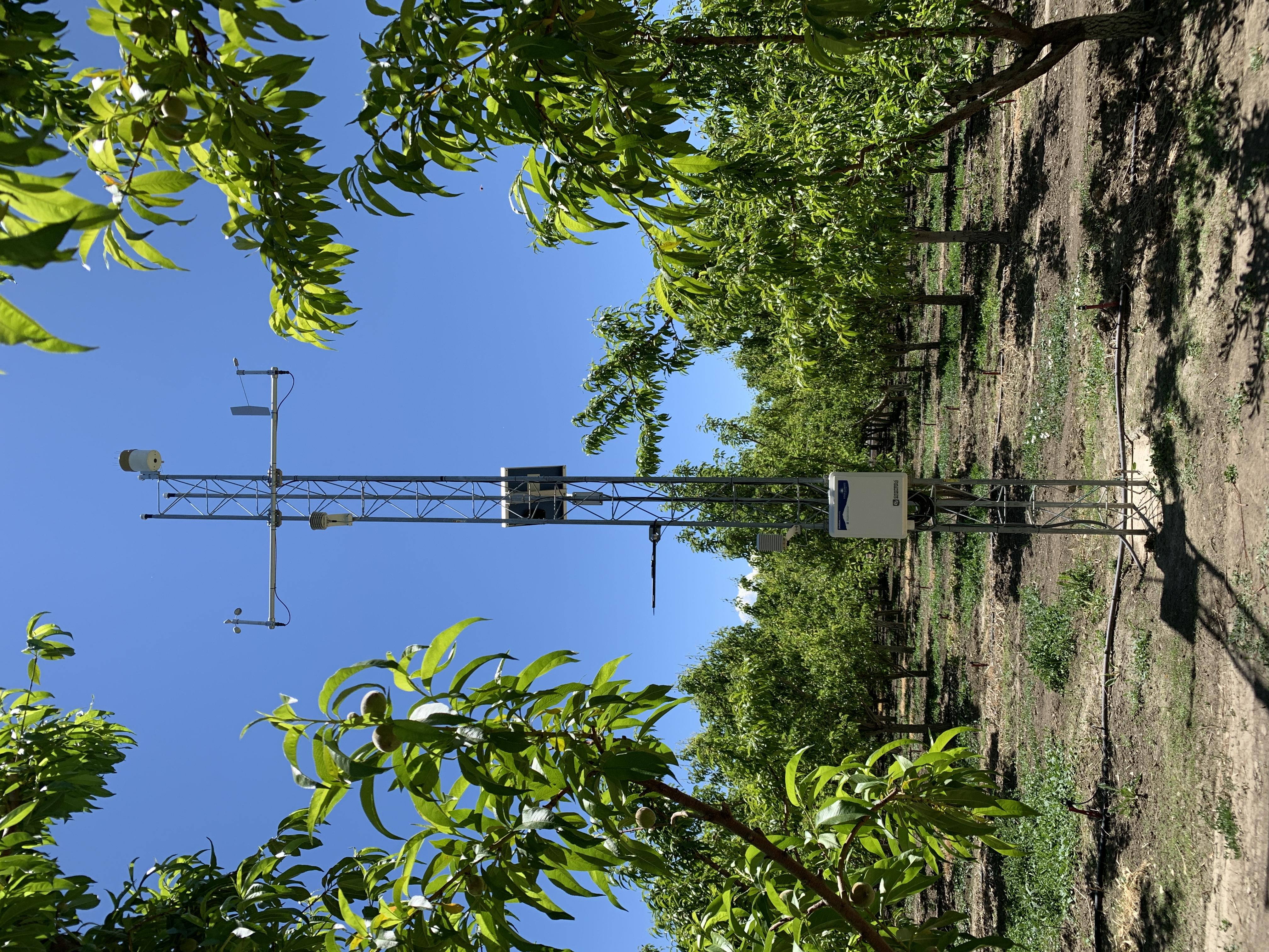 Orchard monitoring