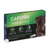 Capstar Flea Tablets for Dogs Over 25 lbs (6 Dose)