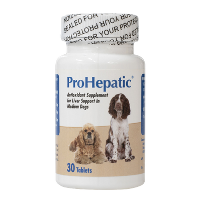ProHepatic Liver Support for Dogs (Medium/Large)