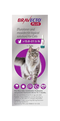 Bravecto Plus Topical Solution for Cats 13.8 to 27.5 lbs