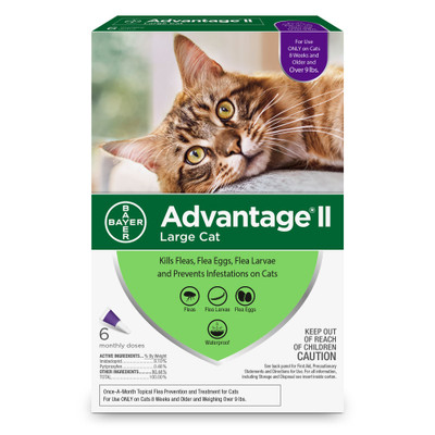 Advantage II for Cats Over 9 lbs, 6 Month Supply