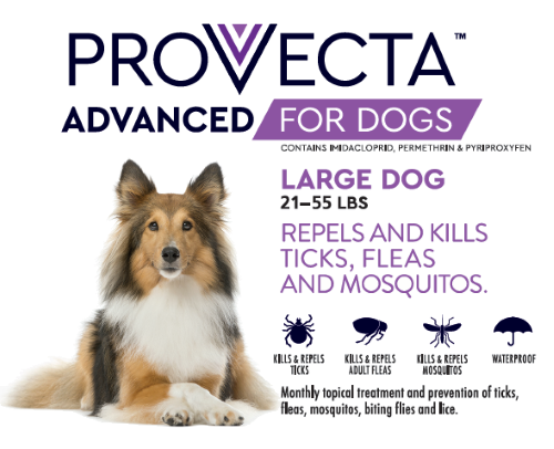Provecta Advanced for Dog (4 dose card, 21-55 lbs.)