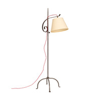 Vintage French Iron Floor Lamp
