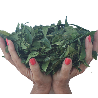 Whole Neem leaves, Slow  Dried Under Shade (5 oz) - Premium  - Make Your Own Extract