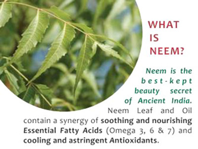 Top 5 Ways to use Neem for Teeth and Gums