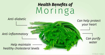 How Moringa Fights Breast Cancer