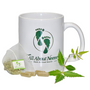 The Bio Film Blaster: The Neem Queen's Ultimate Challenge to Feel Great and Boost Your Immunity! (3PC)