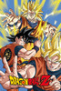 Dragonball Z - Goku -  Mounted Wall Hanger Picture