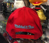 Chicago Bulls Teal Logo Red Flex Mitchell & Ness Snapback Hat