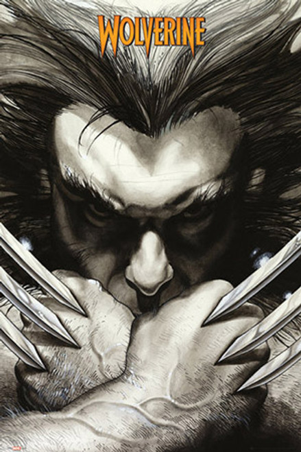 Wolverine Black and White Blockmount Wall Hanger Picture