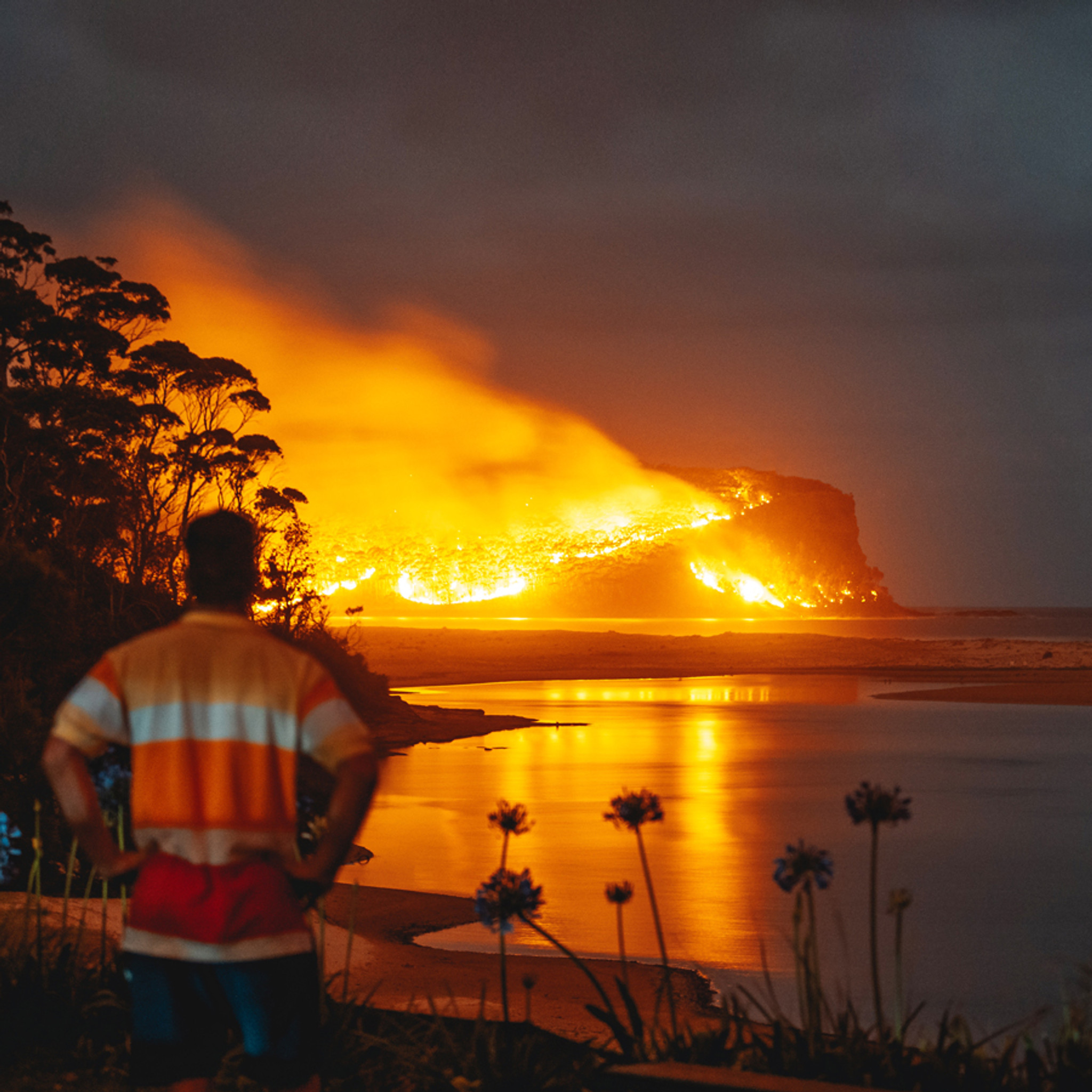 Please Support our South Coast Bushfire Appeal
