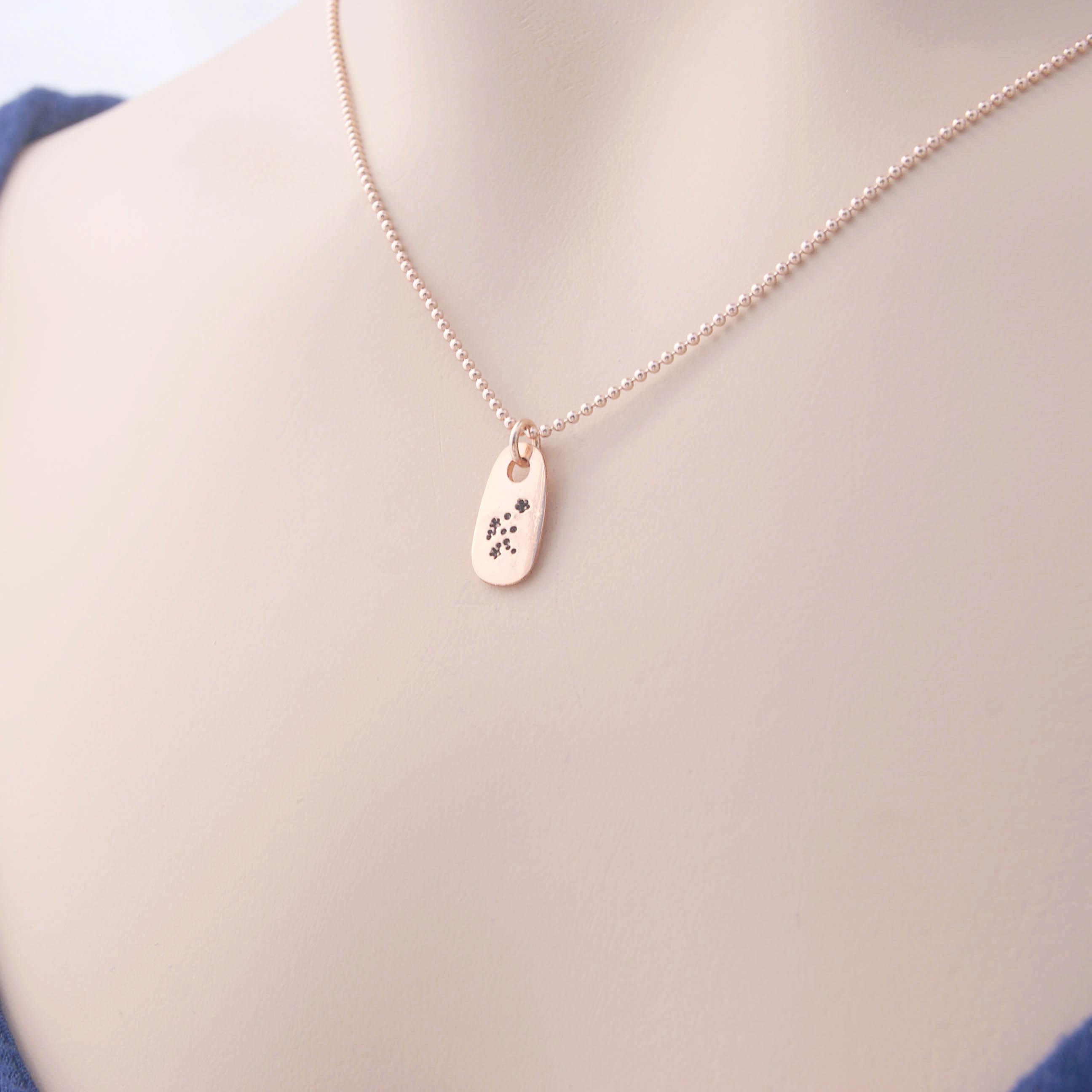 Aquarius Zodiac Constellation Rose Gold Necklace