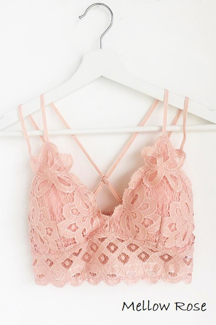 The Scalloped Lace Bralette, Mellow Rose
