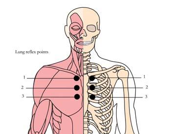 os-10-tachyonized-cold-flu-remedy-tlc-points.jpg