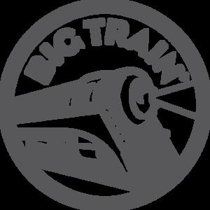 Big Train Blended Drinks - BULK 3.5 Lb Bag