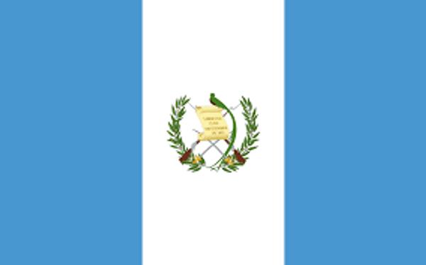 Guatemalan SHB E/P - Medium Roast