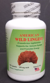 American Wild Lingzhi 40 Year Harvest
