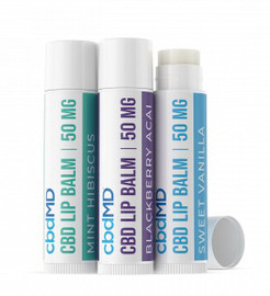 CBD Lip Balm 3 pack