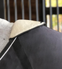 EquiFit WitherShield