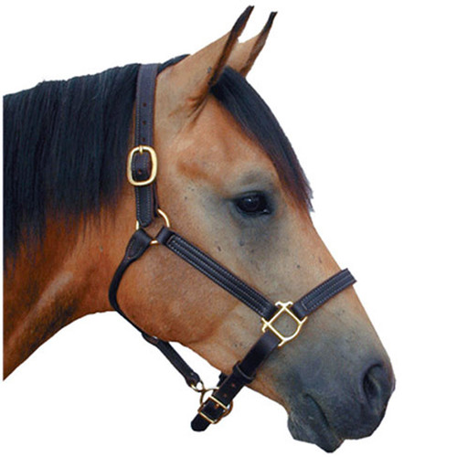 """Deluxe Leather Triple-Stitched Halter 1"""""""